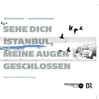 Sehe dich Istanbul, meine Augen geschlossen